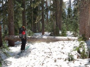 Bushwhack-Ski