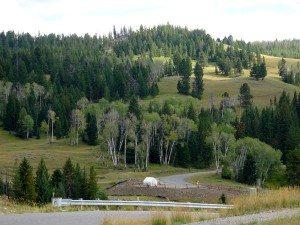 Uplands/Hummocks Trailhead
