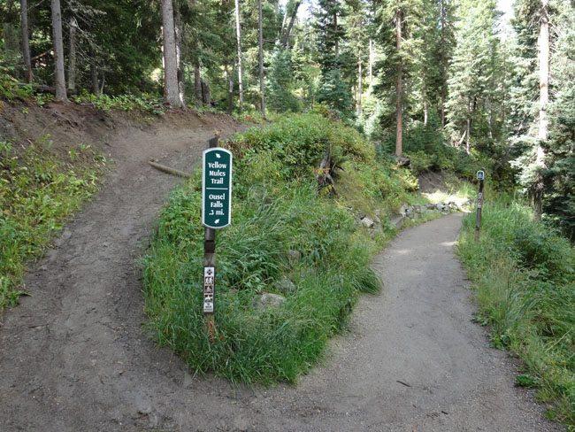 Trail Splits