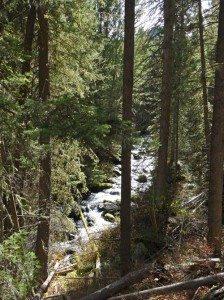 Cascade creek mt