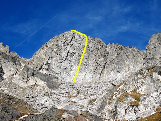 Climbing Beehive Peak Worker Bee