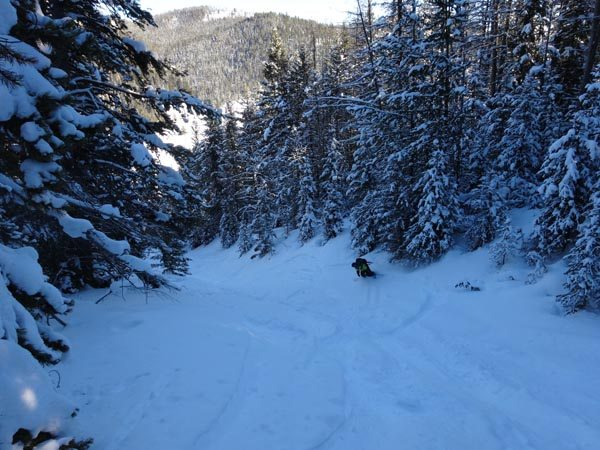Ski Bacon Rind Skillet