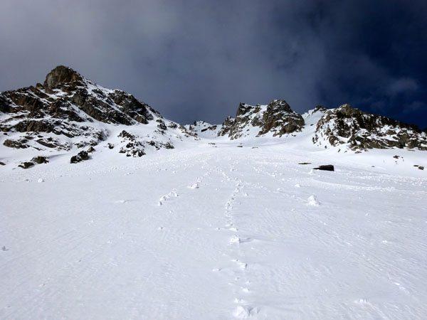 Peruvian Face Ski