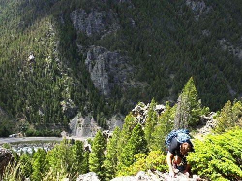 Climbing Crystal Delight