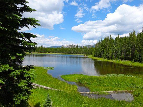 Ulery's Lake Trail