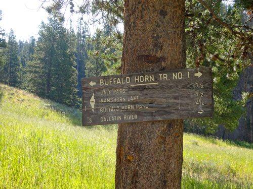 Buffalo Horn Trail