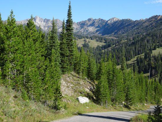 Beehive Basin Road