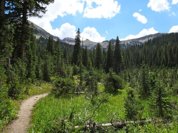 North Teton Creek Trail