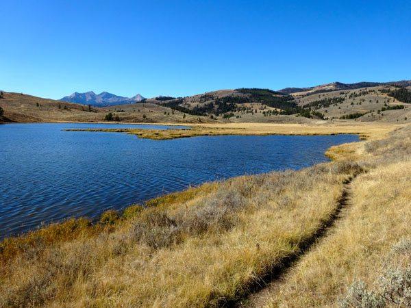 Albino Lake Montana