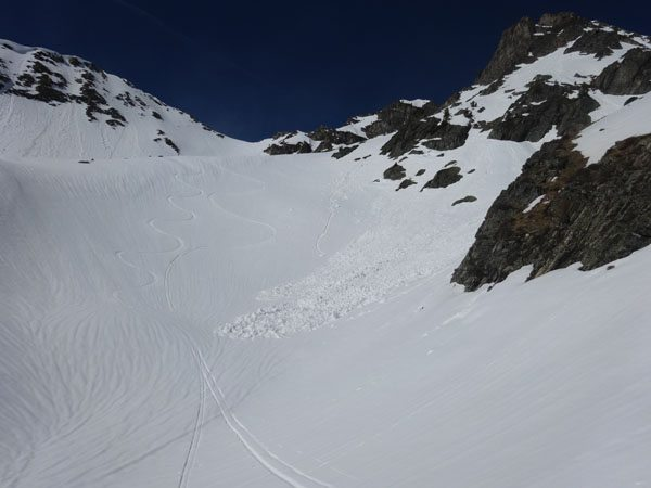 Nice tracks in Bear Basin
