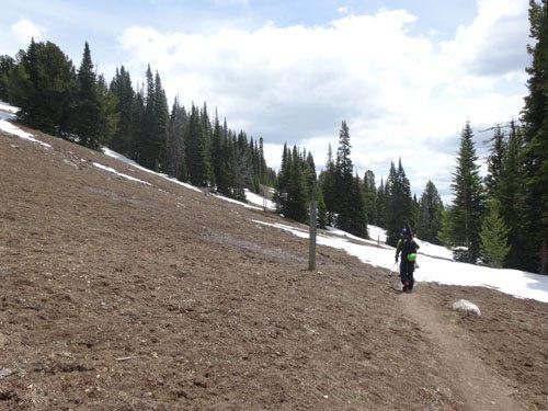 dirt walking beehive basin