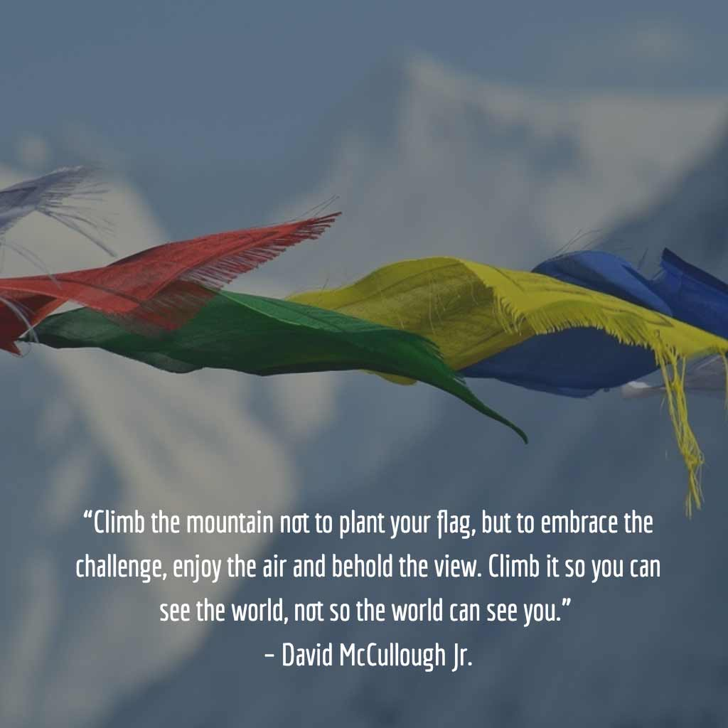 David McCullough Quote
