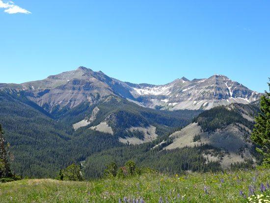 Cedar Mountain, Montana