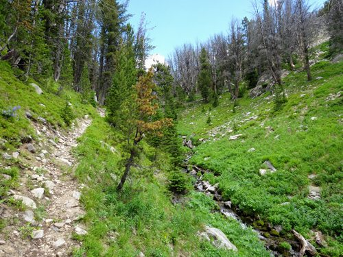Table Mountain Trail