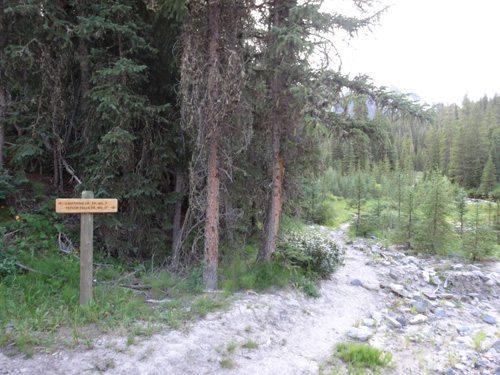 Lightning Creek Trail/Taylor Falls Trail Split
