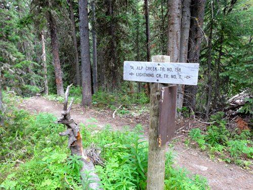 Alp Creek Trail / Lightning Creek Trail Split