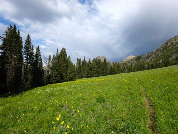 First Glimpse of Imp Peak