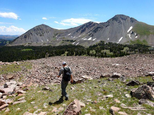 alp basin madison range