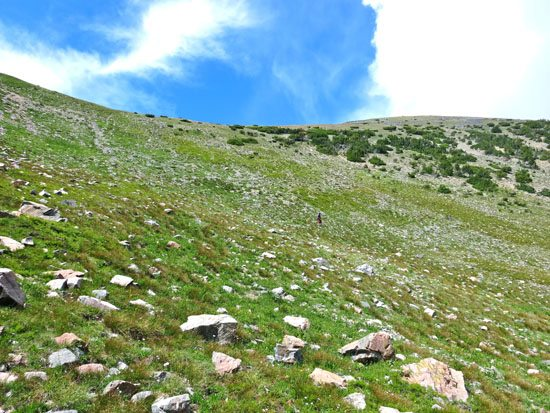 pyramid point madison range