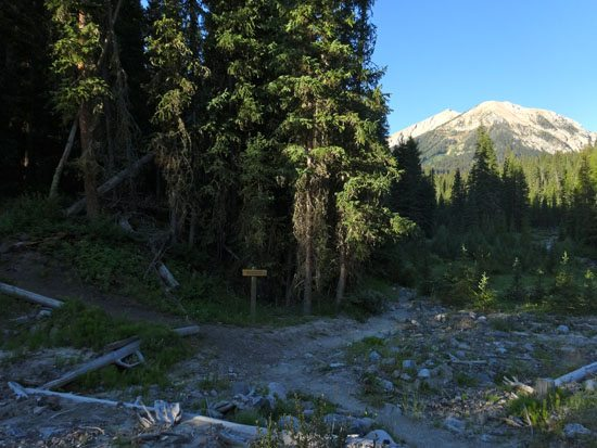 Taylor Creek Trail / Lightning Creek Trail Split