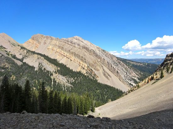 The Taylor Creek Drainage