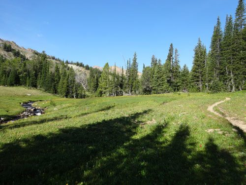 Peaceful brook flowing through the high alpine meadows