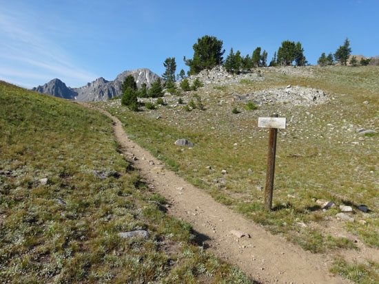 Sentinel Creek Trail #202 and Hilgard Basin Trail #201 Intersection