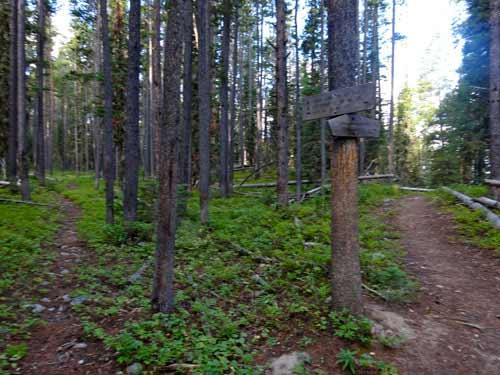 Jack Creek Trail