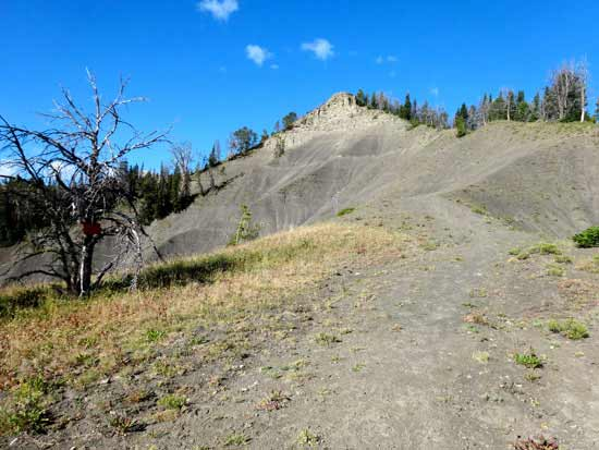 The Cedar Loop Trail on the Wilderness Boundary