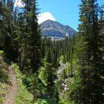Cedar Mountain Y Couloir