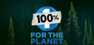 Patagonia Announces 100% on Black Friday, 1% Every Day | Screenshot Patagonia.com