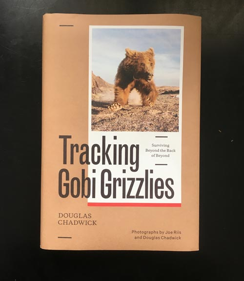 Tracking Gobi Grizzlies by Douglas Chadwick