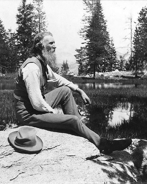 John Muir circa 1902 | Photo: Library of Congress | Photo In Public Domain (PD-US) | By unattributed [Public domain], via Wikimedia Commons