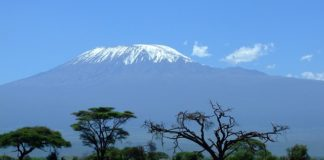 Kilimanjaro, Tanzania   Pixabay Image