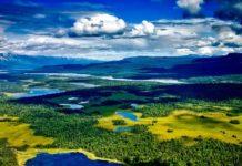 Denali National Park | Pixabay Image