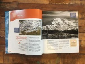 Denali in Aerial Geology by Mary Caperton Morton